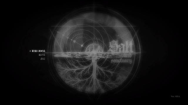 Salt and Sanctuary_20190529230616.jpg